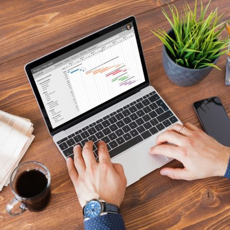 Microsoft Project 2016 Beginner Level 1